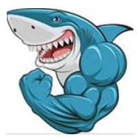 Nick Ponte - Offline Sharks